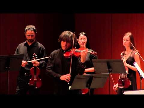 Vivaldi: The Four Seasons  |  International Chamber Soloists