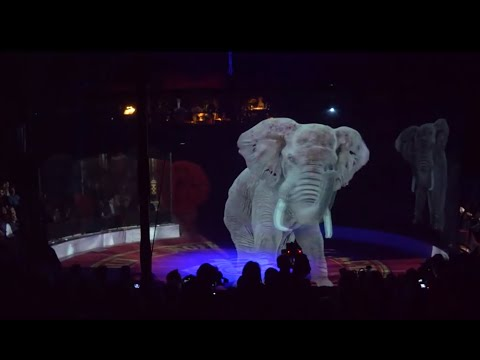 Optoma impresses audiences with a holographic circus experience
