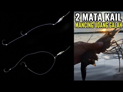 How To Tie 2 Hooks For Prawn Fishing