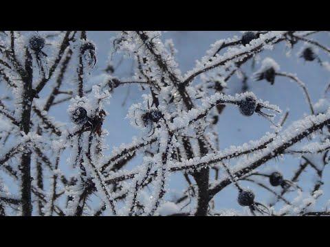 ♫  Музыка души...  Ноктюрн Светлана  -  Арсений Якшиянц. Arseniy Yakshiyants - Nocturne Svetlana