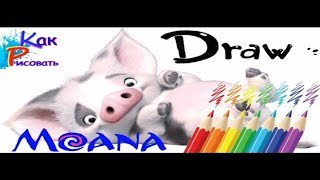 Моана как нарисовать свинку из мультфильма  Moana how to draw