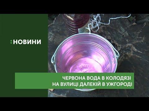 Воду червоного кольору виявили в колодязі в Ужгороді