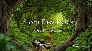 Beautiful Nature Healing, Deep Sleep Music, Peaceful Calming Nature Music (Forest Healing) ★ 32