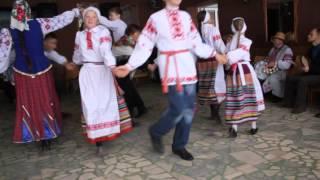 polka Tadora