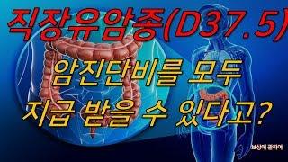직장유암종(D37.5)암진단비 전액보상에관하여