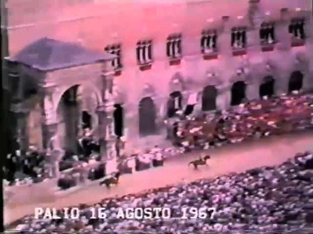 Palio 16 agosto 1967
