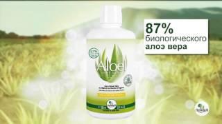 видео Текила полезна для здоровья