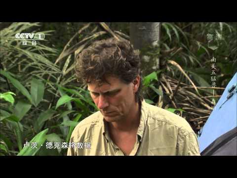 南美五猛兽——森蚺 《魅力纪录》 2014.05.13 CCTV-1