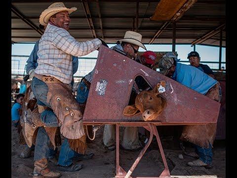 Cattle Branding on Acoma Pueblo