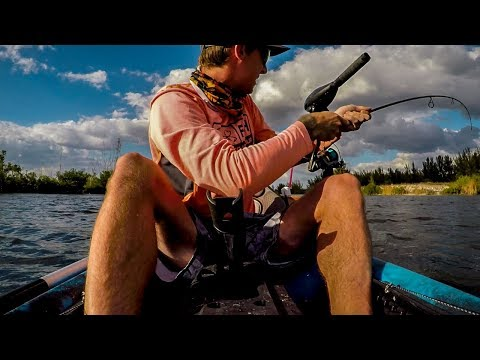 Jack Attack! Cape Coral Saltwater Canals - Episode 18