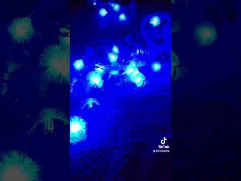 5米50燈LED毛毛球燈串-藍白(247-6589-01)