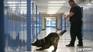 Police Dogs Searched My Locker...(suspended from school) *storytime*