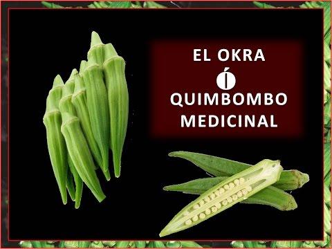 EL OKRA O QUIMBOMBO MEDICINAL
