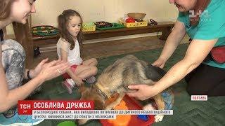 Собака без задніх ніг проявила талант роботи з дітьми реабілітаційного центру