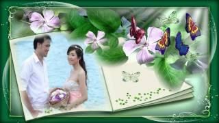Em Là Cô Dâu - Lương Bích Hữu thumbnail