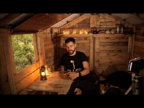Off The Grid Cabin: Alone in the Woods - One Million Subscribers