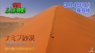 土曜よる9時 『世界ふしぎ発見!』 3月4日放送予告。 世界最古のナミブ砂...
