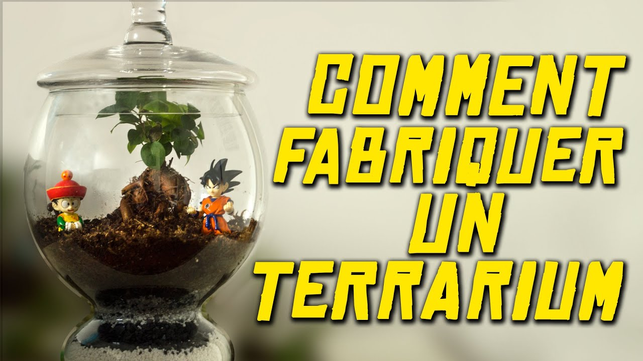 comment fabriquer un terrarium experience youtube. Black Bedroom Furniture Sets. Home Design Ideas
