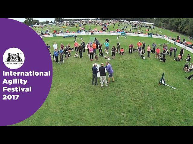 Olympia Quarter Final Large - G3-5 Award Ceremony | International Agility Festival 2017