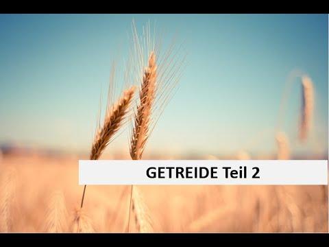 Download Getreide Fungizid 2021