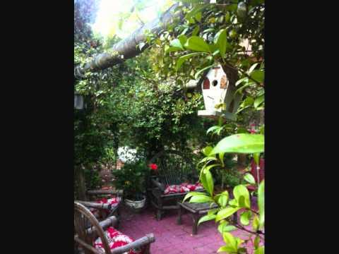 Rebecca\'s Garden - YouTube