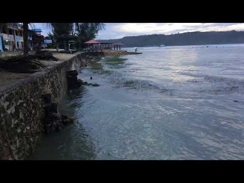 Natural and Nature-based Defenses for Coastal Resilience Series - Nias Island - Part 3