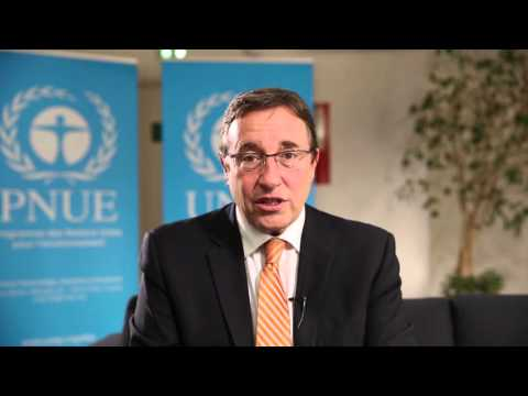 UNEP: Global Trends in Renewable Energy Investment 2016