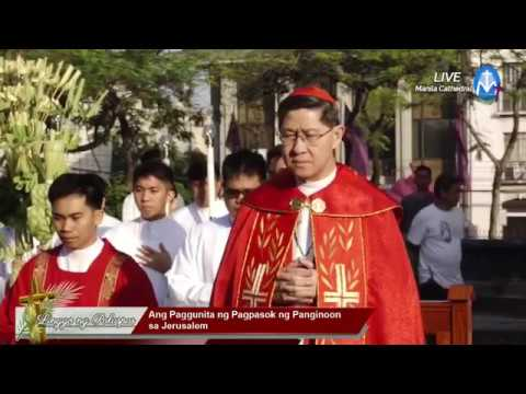 Holy Mass of Palm Sunday at the Manila Cathedral | 25 March 2018