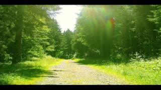 Relax musica, natura, boschi, cascate, montagne, musica rilassante e melodiosa