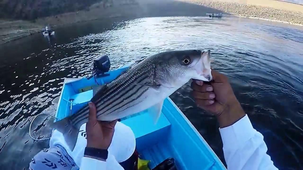 Fishing castaic lake youtube for Castaic fishing report