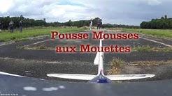 Pousse Mousses aux Mouettes d' Epinay -sur -Orge.