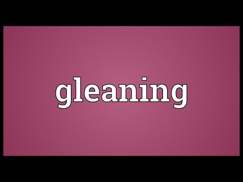 Gleaning Meaning