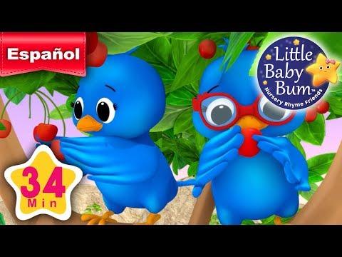 Dos pajaritos | Y muchas más canciones infantiles | ¡34 minutos de recopilación LittleBabyBum!