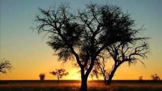 Culoe De Song ft 340ml - Let The Sunshine (Fearless Boys Remix)
