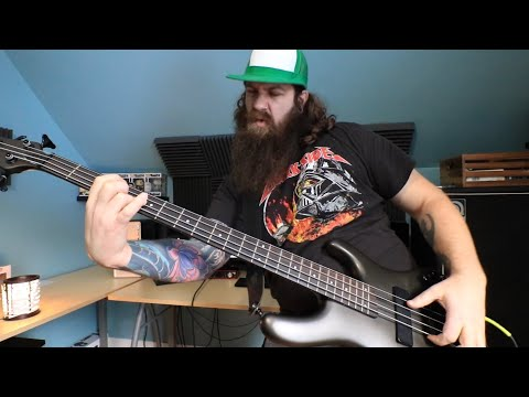FAKE GUITARIST Plays FAKE BASS And FAKE BASS LINE