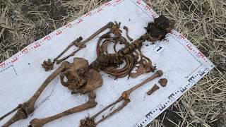 Фильм 36 Раскопки в полях Второй Мировой Войны/Film 36 Excavation in fields of World War II