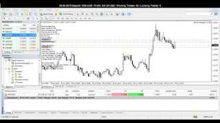 Forex Arbitrage EA - 29.06.15 - Profit + 33 %