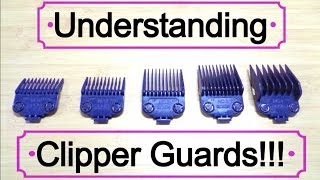 Learning and Understanding Clipper Guards