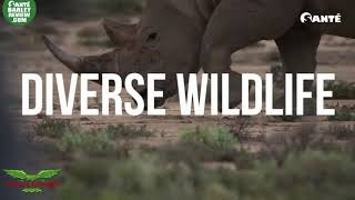 2019 Sante Global Travel to South Africa Teaser