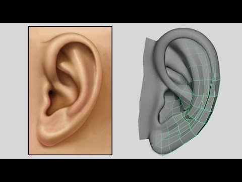 How to Model an Ear - Low Poly to Intermediate 3D Modeling Tutorial - Box Modeling