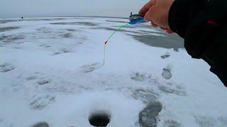 ВЫ ТАКОЕ ВООБЩЕ ВИДЕЛИ НА РЫБАЛКЕ рыбалка на водохранилище зимой 2021