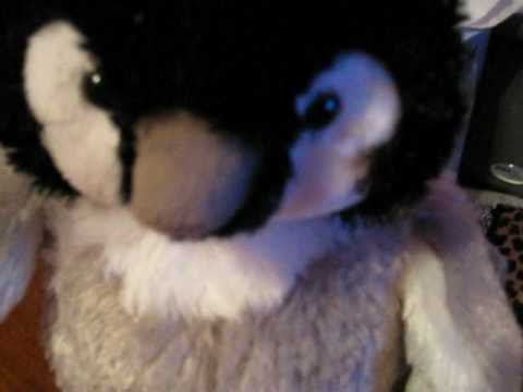 Help Me Figure Out A Good Name For The Webkinz Baby Penguin