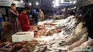 سوق العبور للاسماك ..ازاي تشتري  وتعرفي السمك الطازج و ما ينضحكشي عليكي