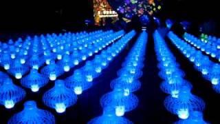Цветочная выставка в Тайбэе - Flora EXPO 2010(, 2010-11-12T13:42:52.000Z)