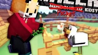 Minecraft | CATCHING CHICKENS | Foxy's Bedrock Survival [6]