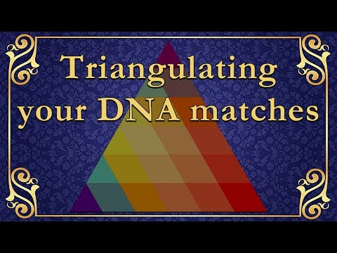 Ancestrydna Match Triangulation To Find Or Prove Your Family Tree