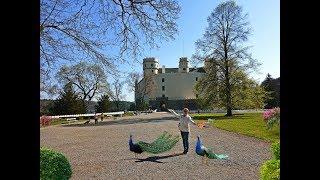 Удивительный замок Орлик над Влтавой