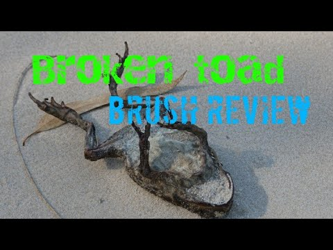 Broken toad brushes review