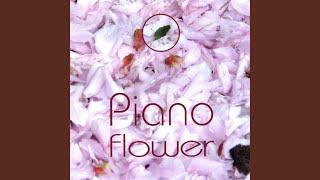 Piano Tulip