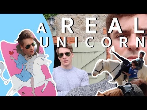Memories, Micro Ponies and A REAL UNICORN! I Tom Daley